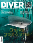 Diver Magazine South Africa Sevengill Cover