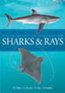 Field Guide to Australian Sharks and Rays Daley