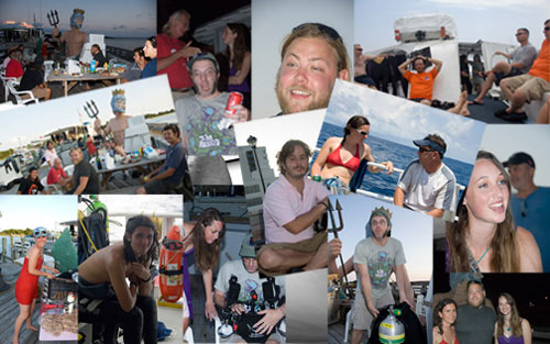 Sharkfest Collage