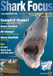 Andy Murch Shark Focus Magazine Cover